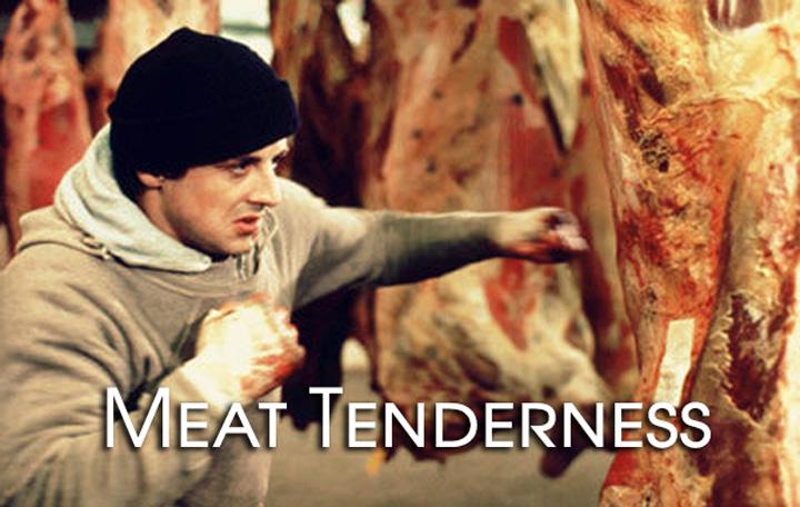 Rocky Tenderizing Beef